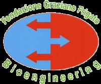 Fondazione Frigato